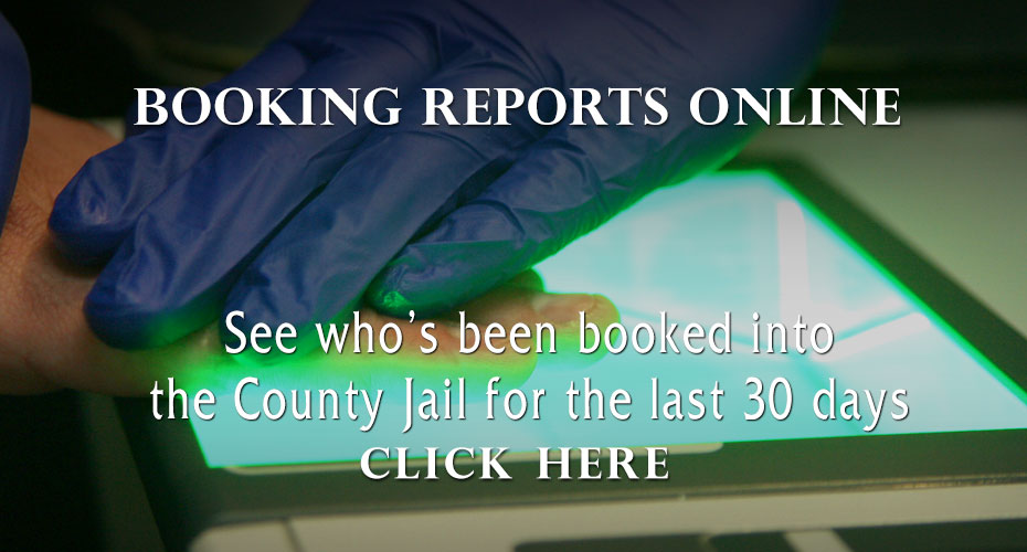 Booking Reports
